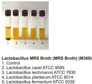 Фото HiMedia GM369-500G Бульон MRS для лактобактерий, гранулированная форма (уп/500 гр)