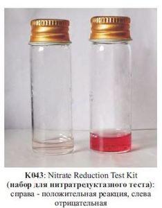 Фото HiMedia K043-1KT Набор для проведения нитратредуктазного теста для микобактерий